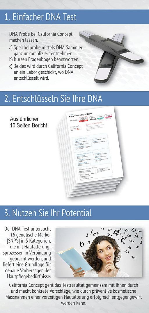 web brochure dna 2.jpg