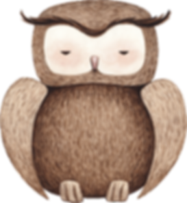 Drawing of Owl