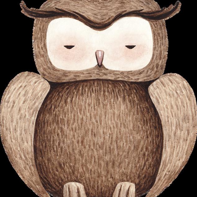 Disegno di Owl