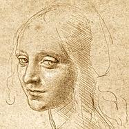 Leonardo da Vinci, Testa di giovane donn