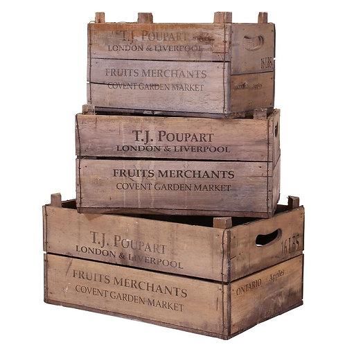 Set 4 APPLE Boxes + 1 KIPPER box