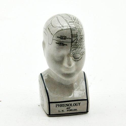 "8"" PHRENOLOGY HEAD"