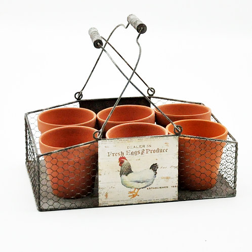 39CM SET 6 TERRACOTTA PLANT POTS IN TRAY