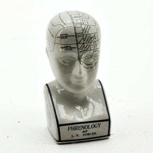 "12"" PHRENOLOGY HEAD"