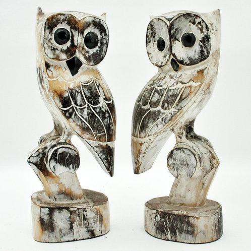 50CM SET 2 OWLS