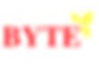 Byte Company Logo