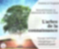 arbre de connaissance.png
