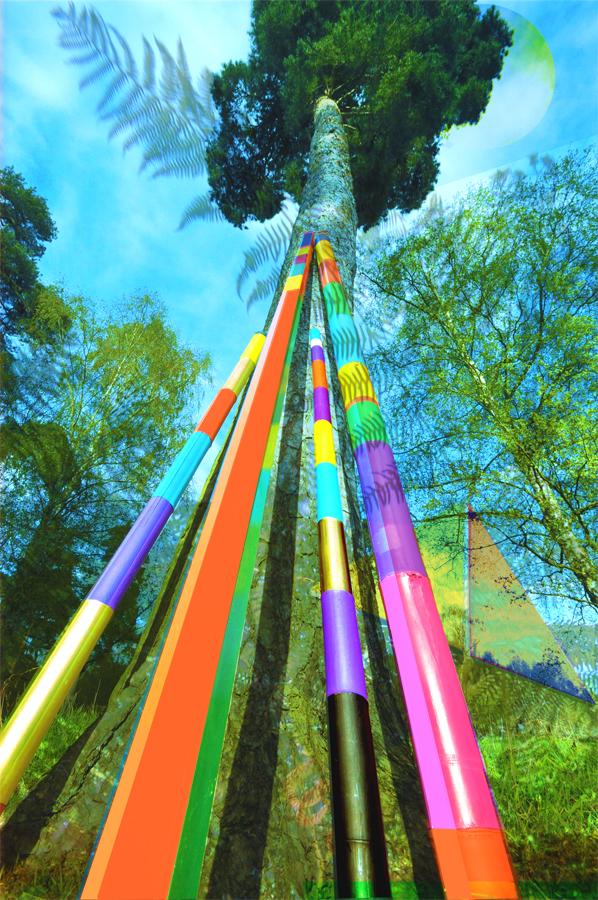 final-totem-tall-tree_0117