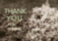 thank_you1-page-001_web.jpg