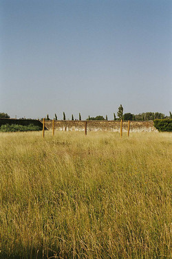 CB-prairies-tronc_web