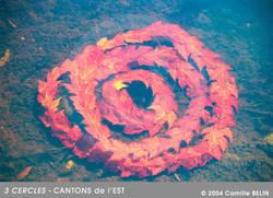 3-Cercles,-Canton-de-l'est,2004