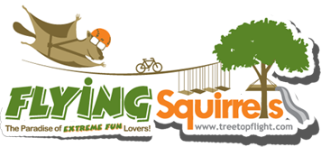 Flying Quirrels logo.png
