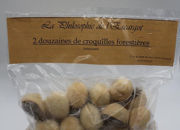 2 Dz croquilles d'escargots forestières