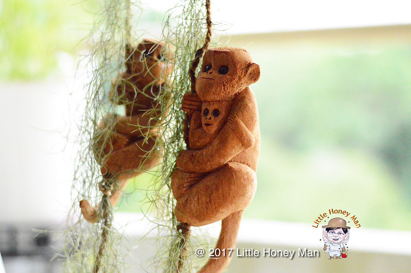 Spanish Moss with Beautifully Handcrafted Monkey