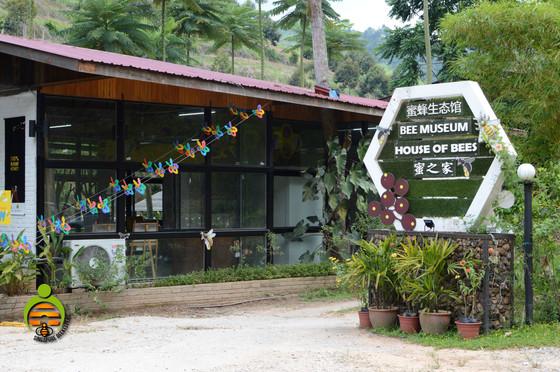 Bee Museum In Bentong.