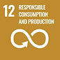 12-responsable consumption and productio