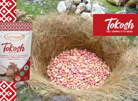 Conoce como se hace el Tokosh