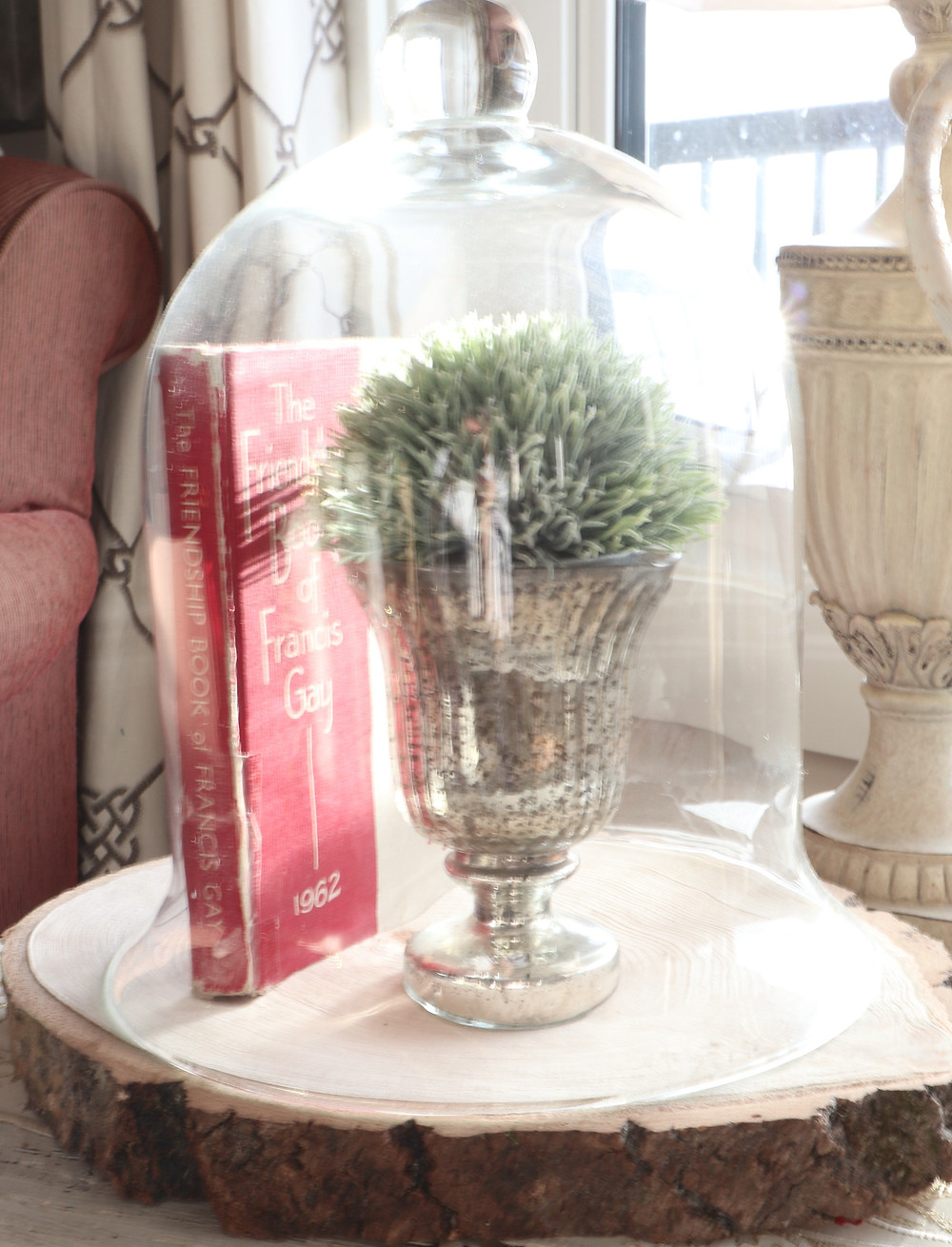 vintage book under glass cloche