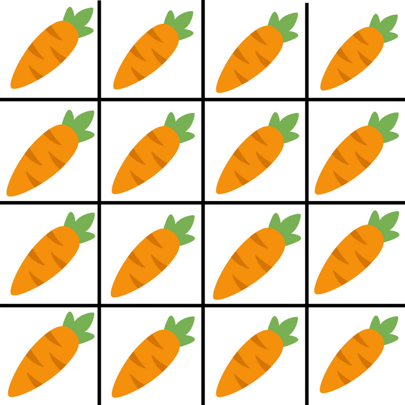 2x2 wire mesh gardening/carrots
