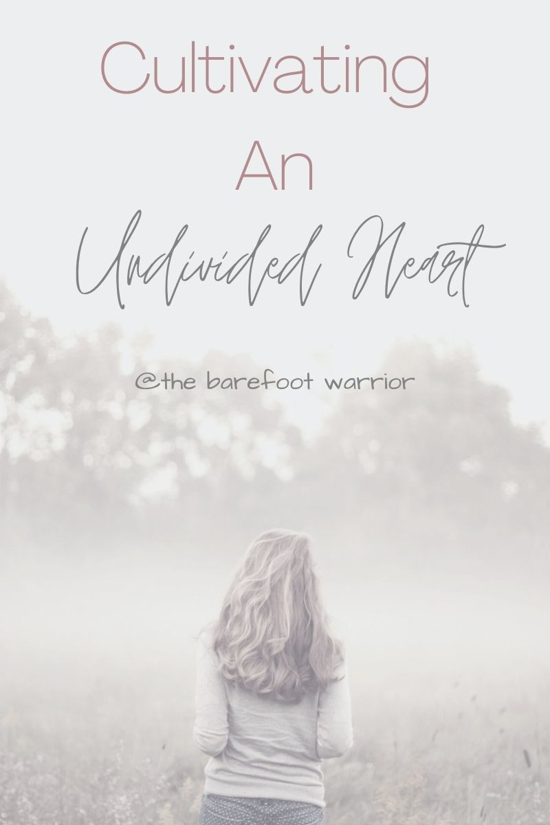 Cultivating an undivided heart