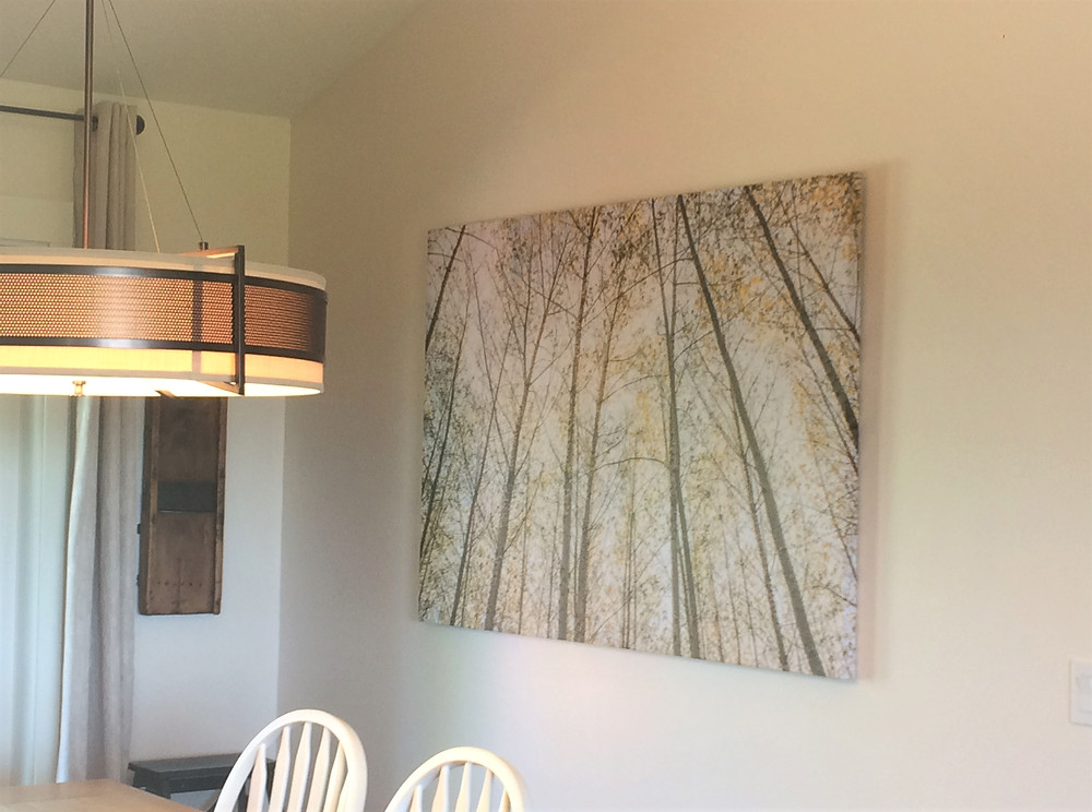 Birch trees wall artwork