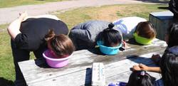 New River Beach picnic