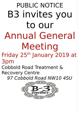B3 Annual General Meeting 2019