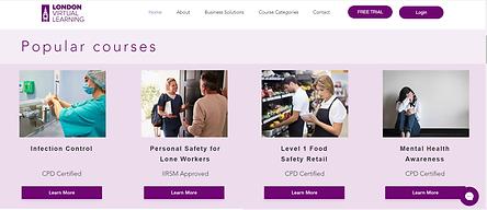London Virtual Learning Website Sample b