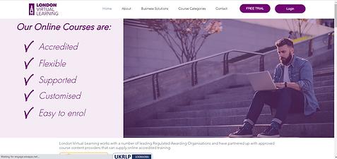 LVl Website.png
