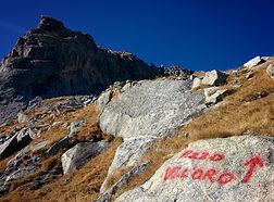 Valle-dellOro-verso-il-Pizzo-dellOro.jpe