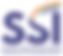 logo SSI.png