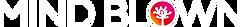 Logo Schriftzug Weiss.png