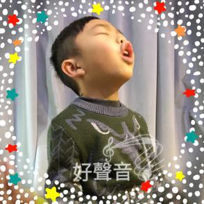 好聲音的定義 On good singing