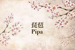中樂小知識:琵琶 Chinese Instruments 101: Pipa