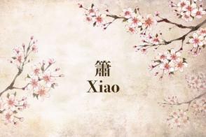 中樂小知識:簫 Chinese Instruments 101: Xiao