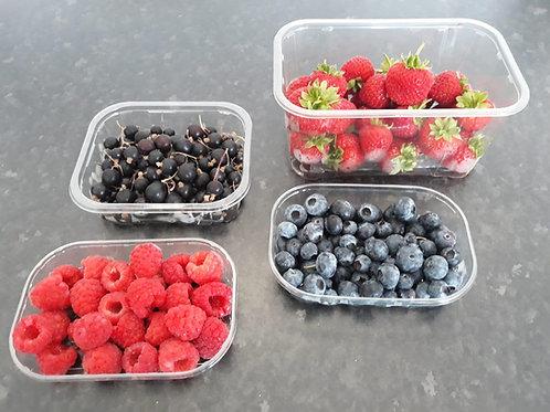 Berry Box