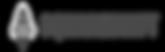 logo gray.png