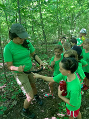 The Wilderness Club Summer Camp with The Wilderness Club
