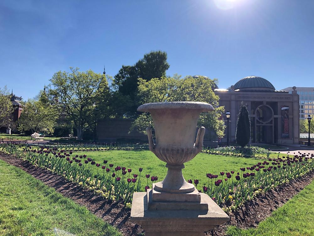 Haupt Garden in Washington, D.C.
