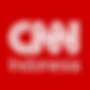 CNN_Indonesia.svg-2.png