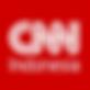 CNN_Indonesia.svg-2.png
