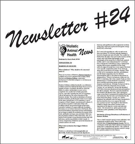 Newsletter 24 -Diabetes In Your Pet