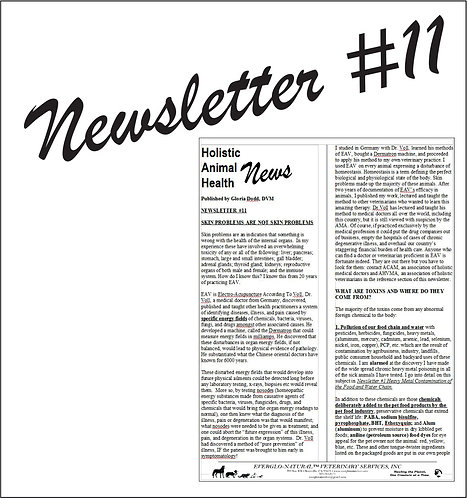 Newsletter 11 - Skin Problems are not Skin Problems