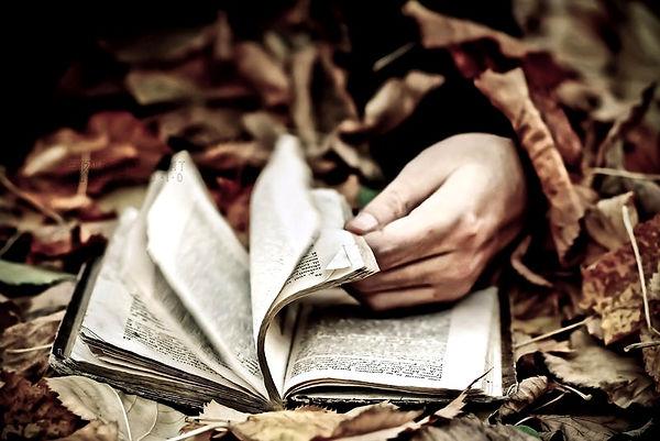 the_reader__by_tinaapple_d349qn3-fullvie