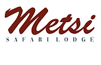 Metsi Logo_edited.png