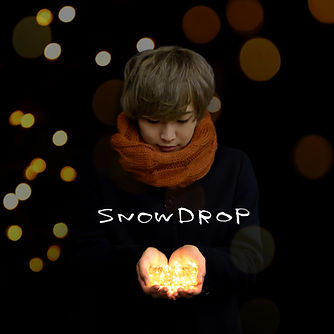 besg_jk_snowdrop-large.jpg