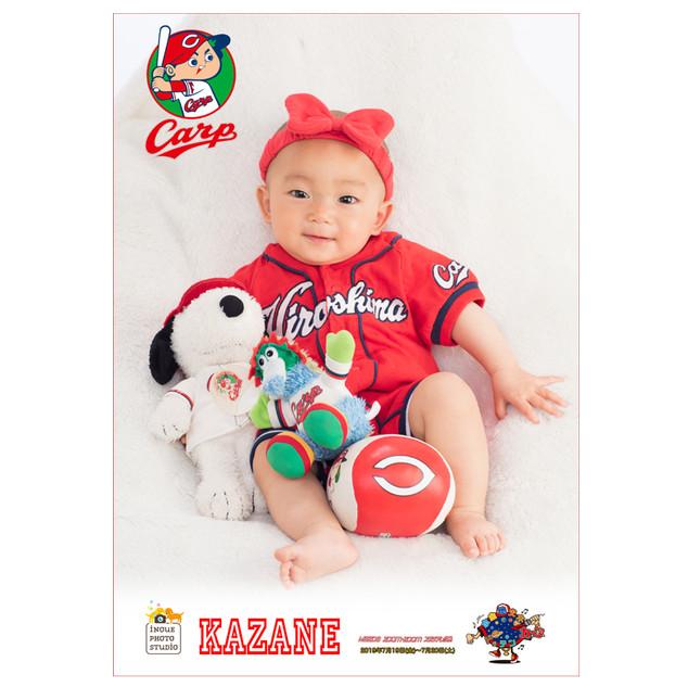 23カープ赤ちゃん2019.jpg