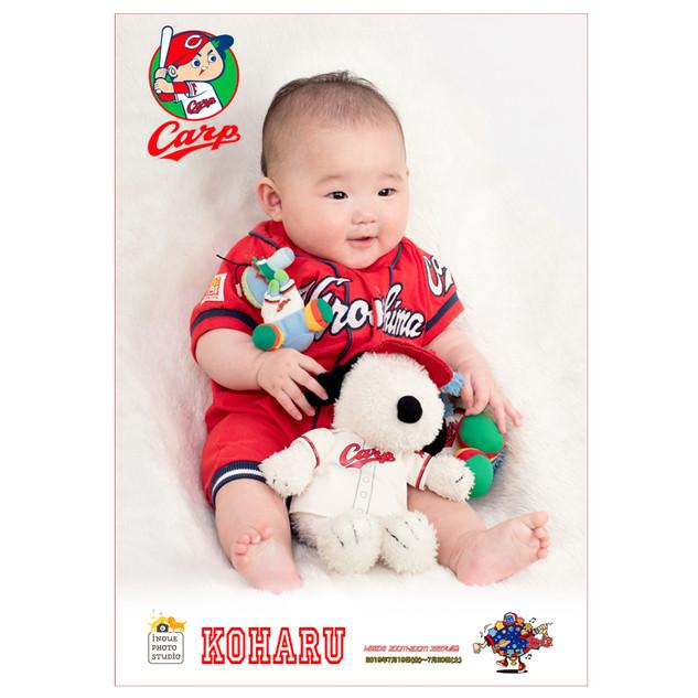 22カープ赤ちゃん2019.jpg