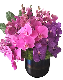 Orchid Trio - GLAMAZON.png