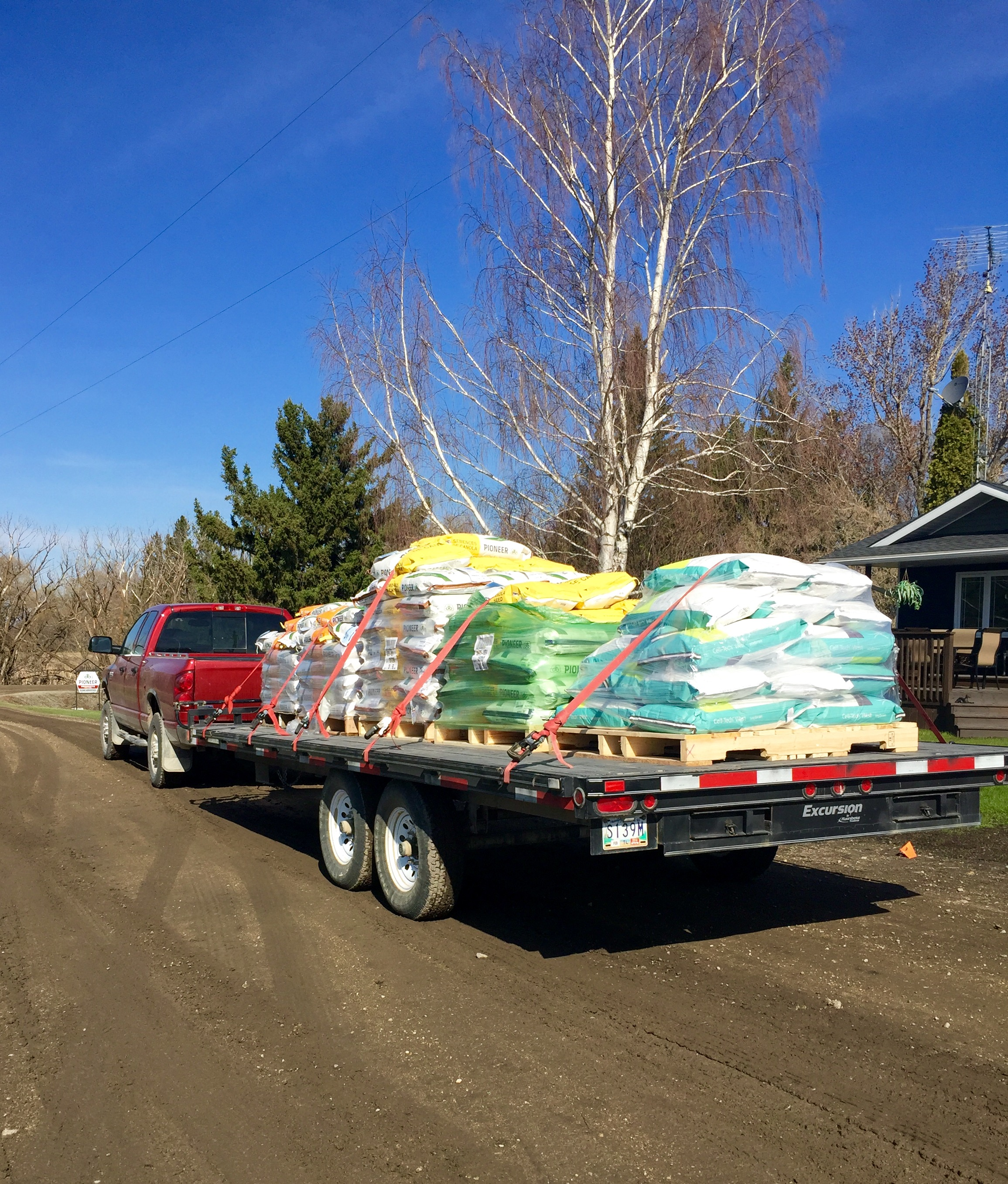 FullSizeRendertruck bed with seed